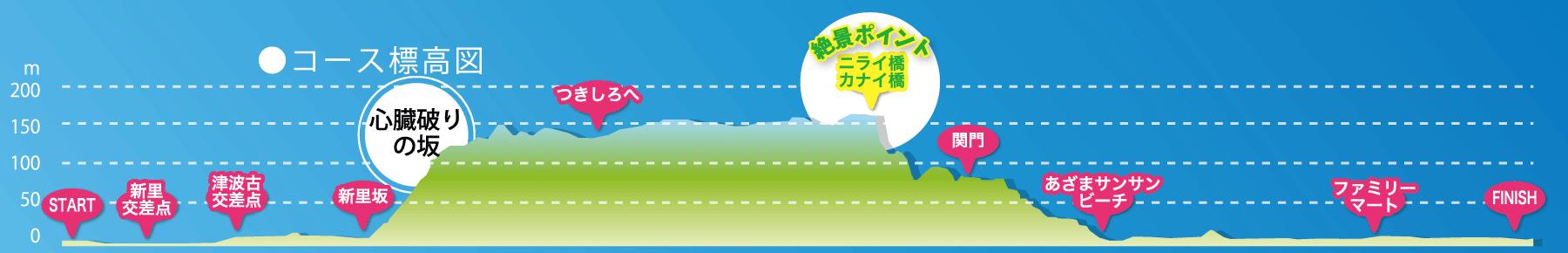 尚巴志ハーフマラソン コース高低差
